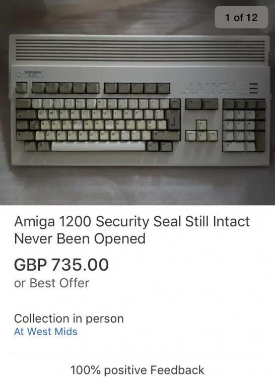 F64ACCD4-A60F-446D-9AEA-3E279951356A.jpeg
